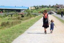 kleinkind-geht-mit-betreuungsperson-in-der-natur-spazieren